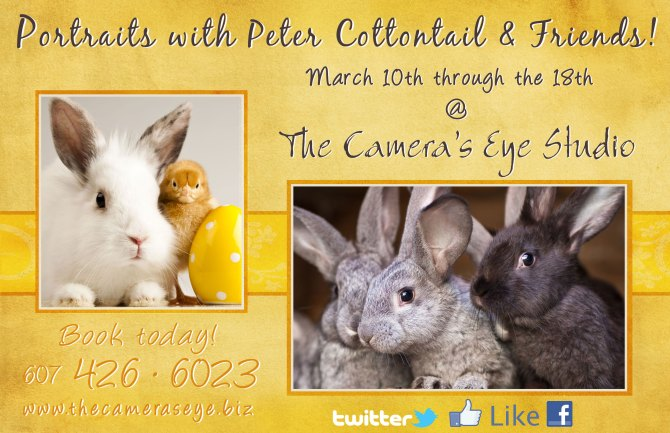 Portraits with PeterCottontail & Friends! @ The Camera's Eye Studio