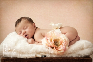 Newborn Photography The Camera's Eye