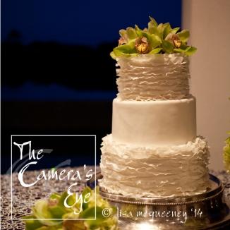 Weddings, The Camera's Eye 020