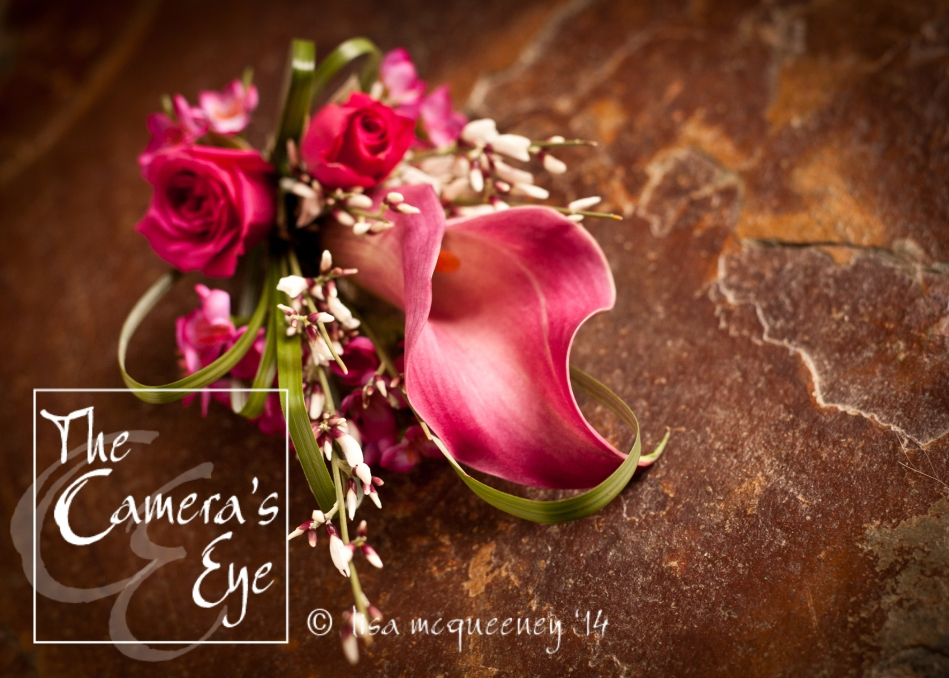 The Camera's Eye, Flowers 00