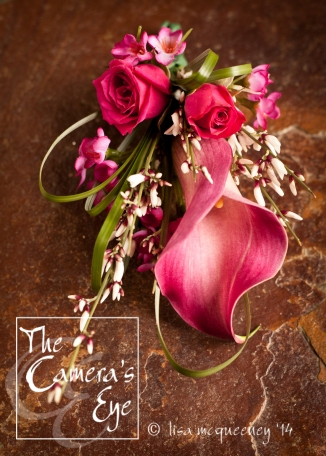 The Camera's Eye, Flowers 1
