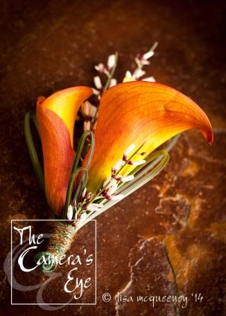 The Camera's Eye, Flowers 2