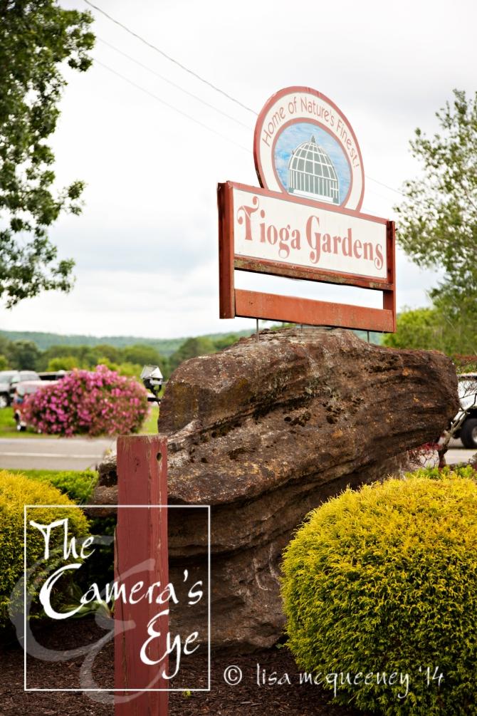 Tioga Gardens in Owego, NY