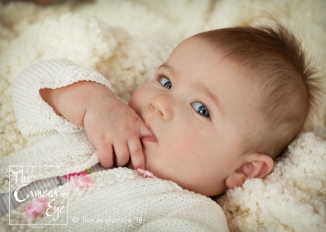 Baby Portraits, The Camera's Eye2