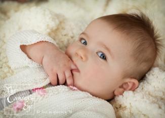 Baby Portraits, The Camera's Eye2