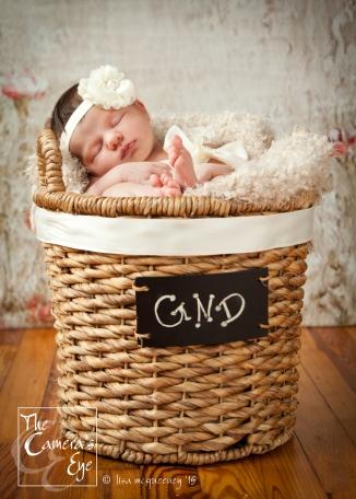 The Camera's Eye, Newborns4