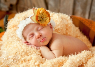 The Camera's Eye, Newborn Photography