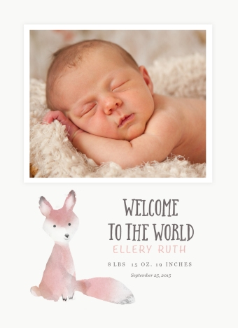 BabyFox Front copy