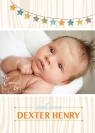 Birth Announcement, The Camera's Eye - Copy