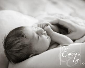 Newborn Photography, The Camera's Eye1