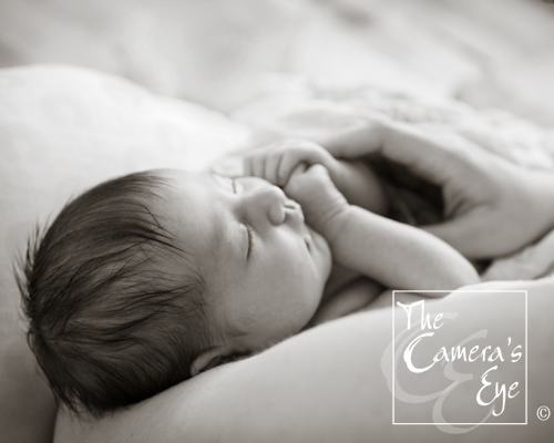 Newborn Photography, The Camera's Eye1
