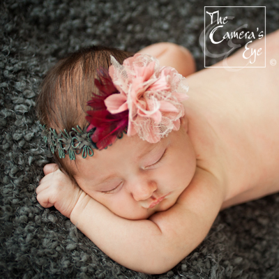 Newborn Photography, The Camera's Eye2