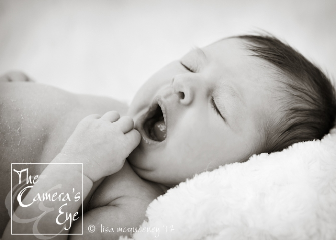 Newborn Photography, The Camera's Eye6